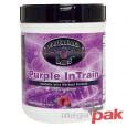 Purple InTrain 992g