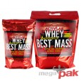 Whey Best Mass Dibencozide Positive 1000 g
