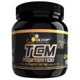 TCM Mega Caps 400 kaps
